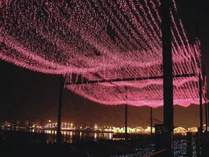 Series 4 : LED Net Light